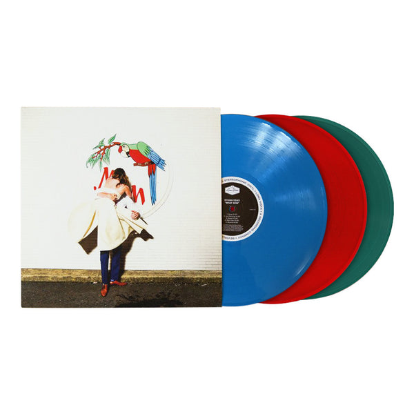 Sylvan Esso: What Now Limited Edition Vinyl