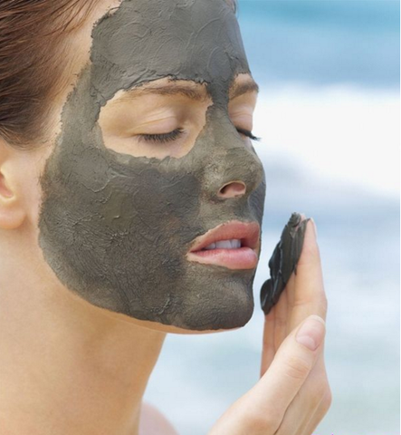 Organics Dead Sea Mud Mask for Face & Body - Pure Mud