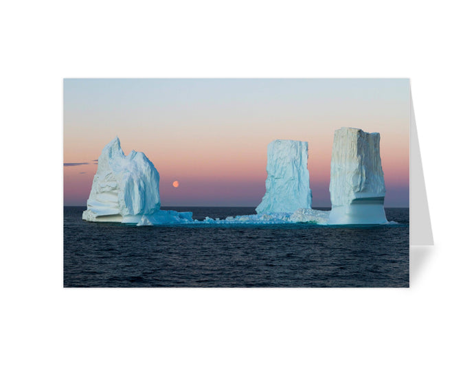SOI Arctic Greeting Cards