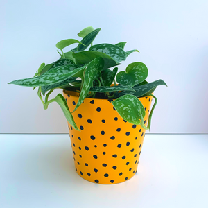 Hand Painted Mustard and Black Spots 13cm Ceramic Planter