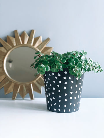 Hand Painted Black And White Spot 13cm Ceramic Planter