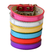 Basic Brights - Pu Leather Dog Collar