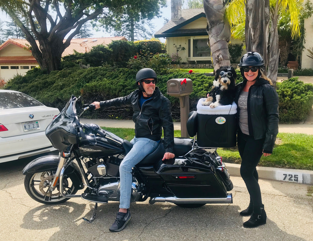 "~ ""Summit"" on her Harley in her new PoochPod ~ Santa Barbara, Ca"