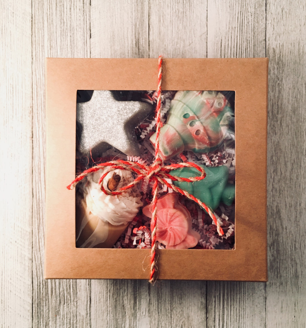 Holiday Gift Box - Little Tree Hugger Soap