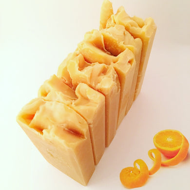 Orange You Glad Soap Bar - Little Tree Hugger Soap