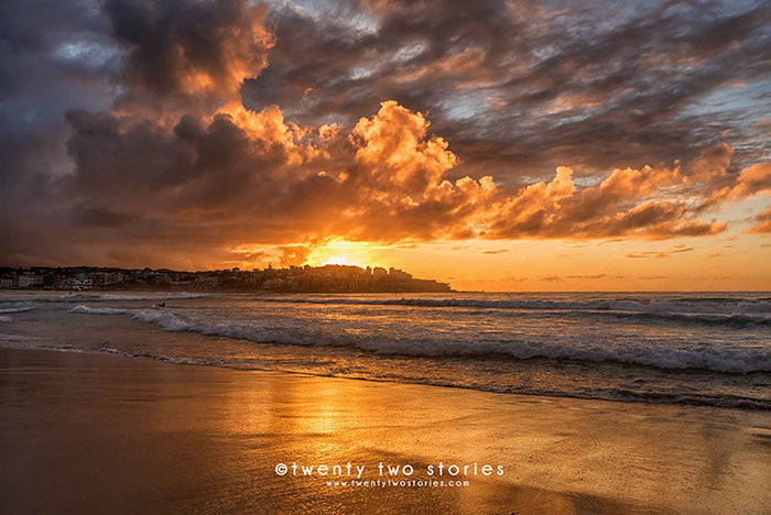 Bondi Beach Photography Print