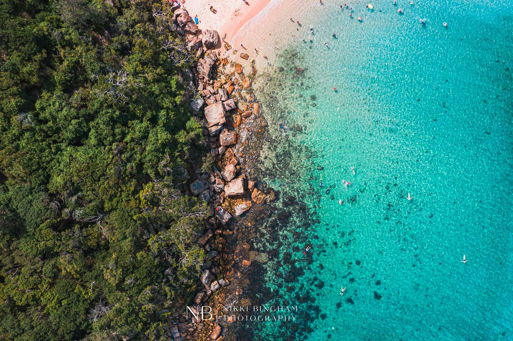 Shelly Beach Snorkel