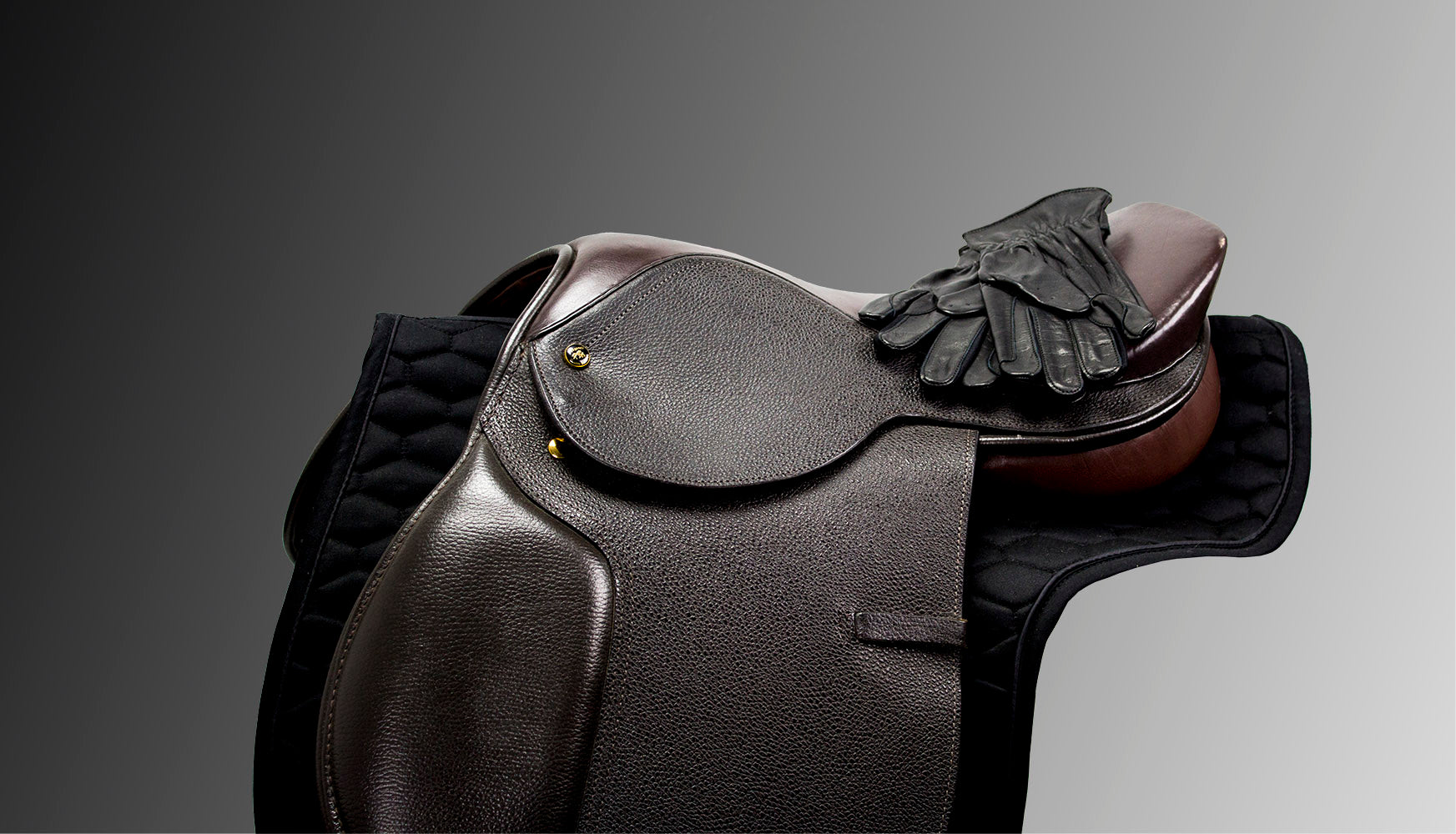 Choosing and Fitting an English Saddle: Part 1, Saddle Types