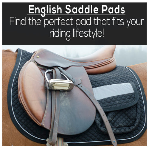 Quality horse tack at wholesale prices tackwholesale shop by brand fandeluxe Gallery