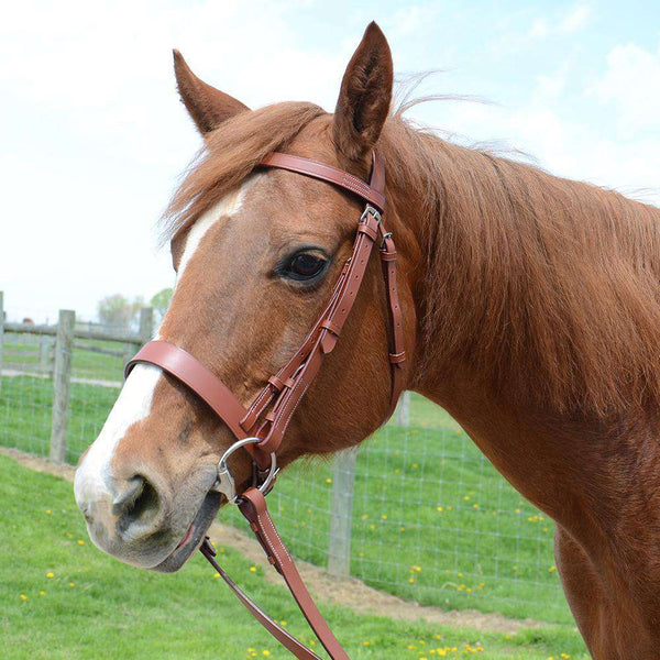 Paris Tack Classic Flat Leather English Hunt Bridle with Laced Reins and 1 Year Warranty