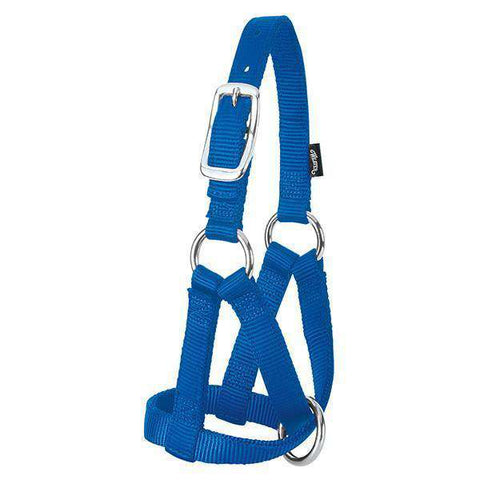 "Weaver Leather Goat Halter, 3/4"" Medium Blue Nylon"