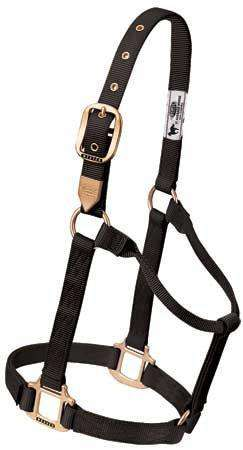Weaver Leather Classic Nylon Horse Halter - Tack Wholesale