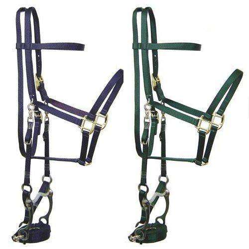 Western Heritage Made in the USA Nylon Halter Bridle Combo with Reins and Bit