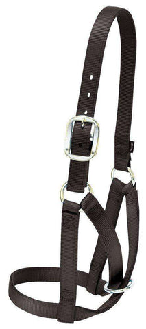 Weaver Barn Cow Nylon Halter - Tack Wholesale