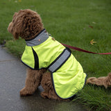 Derby Originals Light Up LED Waterproof Safety Yellow Dog Jacket with Reflective Trim, Belt, & Harness Compatible Opening