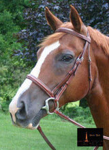 Paris Tack Padded Crown Fancy Stitch Bridle with Laced Reins