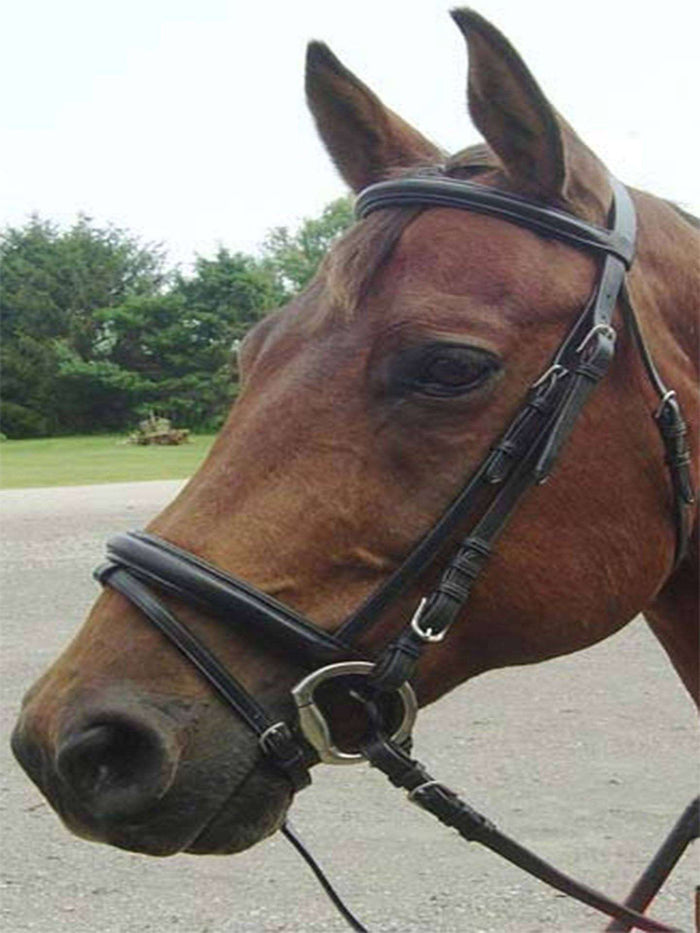 Paris Tack Opulent Series Classic Dressage Bridle with Crank Noseband and Flash Attachment - Tack Wholesale