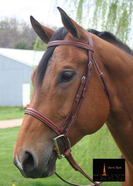 Paris Tack Classic Raised Hunter Bridle with Laced Reins