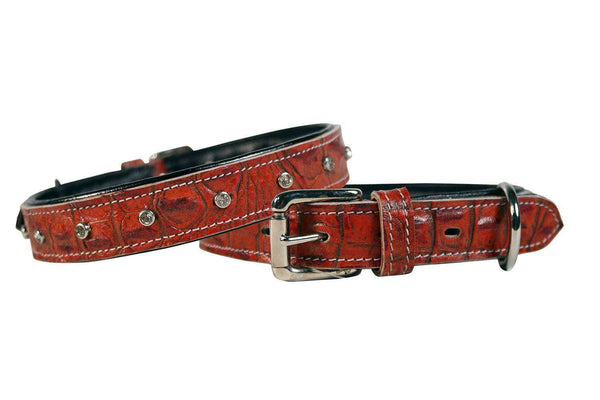 Designer Padded Alligator with Crystals Dog Collar USA Leather