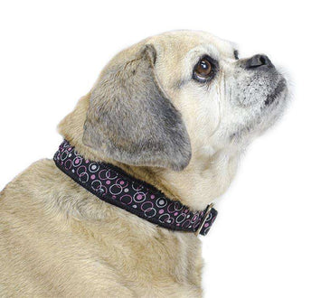 CuteNfuzzy Padded Adjustable Dog Collar with Overlay Warranty - Tack Wholesale