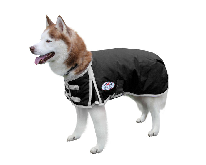 Derby Originals Solid Color Horse-Tough 600D Waterproof Ripstop Nylon Winter Dog Coat with One Year Warranty*