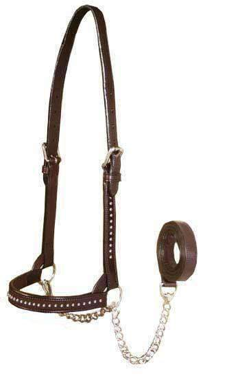 Derby New & Improved Premium Crystal Bling Rhinestone Inlay Flat Leather Cattle Show Halter with Chain Lead   - One Year Limited Manufacturer's Warranty