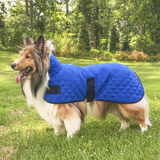 Derby Originals Hydro Cooling Dog Jacket with Harness Compatible Opening - Reflects Heat & Keeps Dogs Cool for Hours