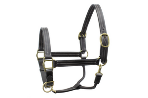 Derby Originals Coventry Triple Stitch Fully Adjustable Leather Halter- Multiple Sizes