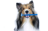 Double Head Pet Toothbrush for Dogs or Cats