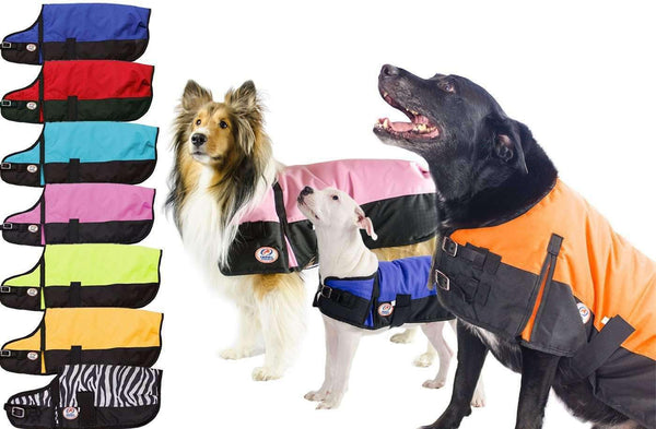 Derby Originals Two-Tone Horse-Tough 600D Waterproof Ripstop Nylon Winter Dog Coat 150g Polyfil with One Year Warranty