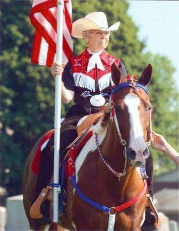 Patriotic Nylon Headstall & Breast Collar Set in Pony, Cob, Full Horse - Tack Wholesale