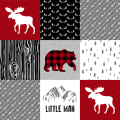 Designer Minky Blanket - Little Man Plaid