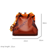 Sophie Transparent Coin Acrylic Chain Bag