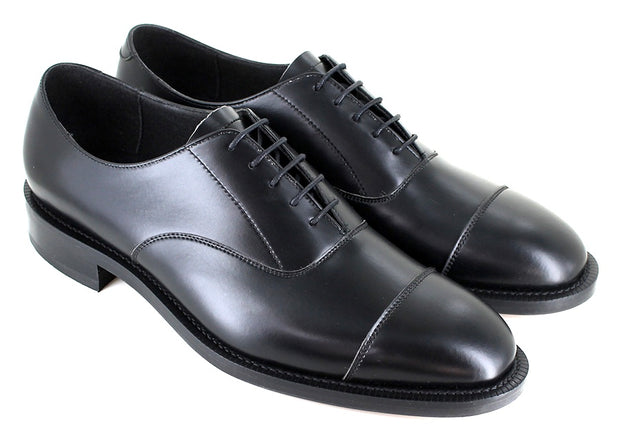Pimlico Oxford - Black