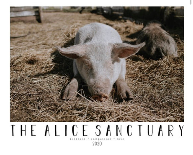 The Alice Sanctuary 2020 Calendar