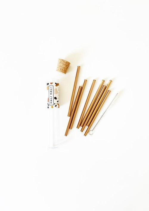 Reusable Cocktail Straw Set
