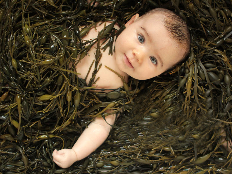 Baby surounded by seaweed