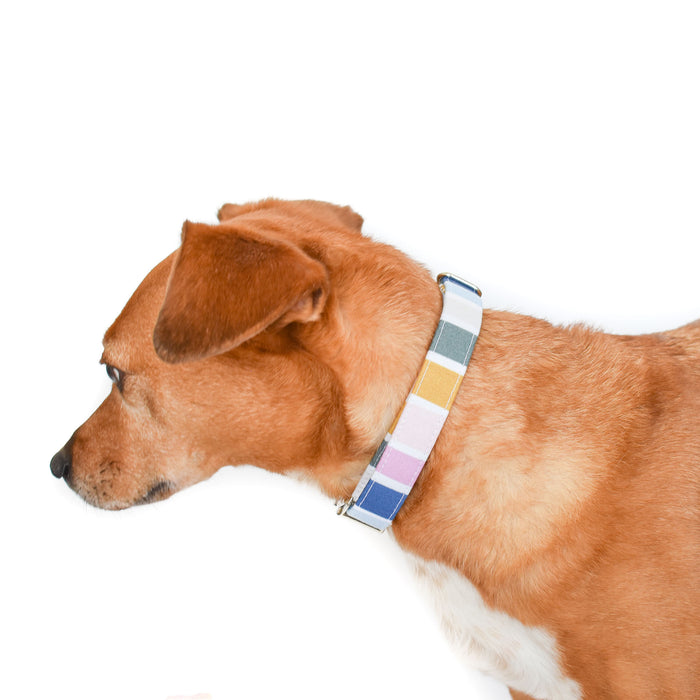 THE ELM DOG COLLAR