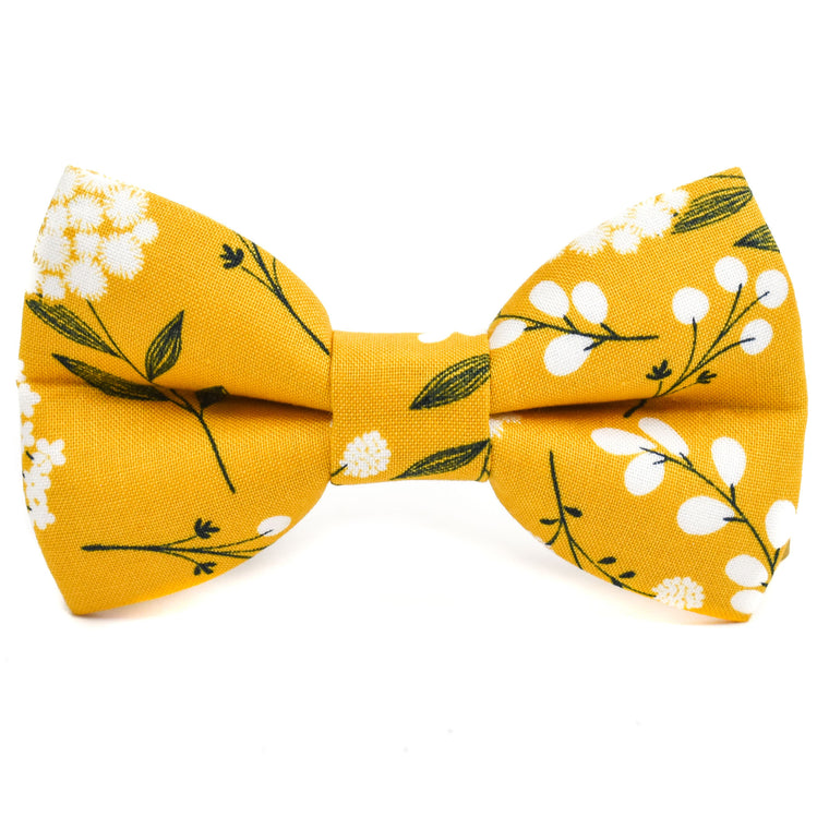 The Tuscany Bow Tie