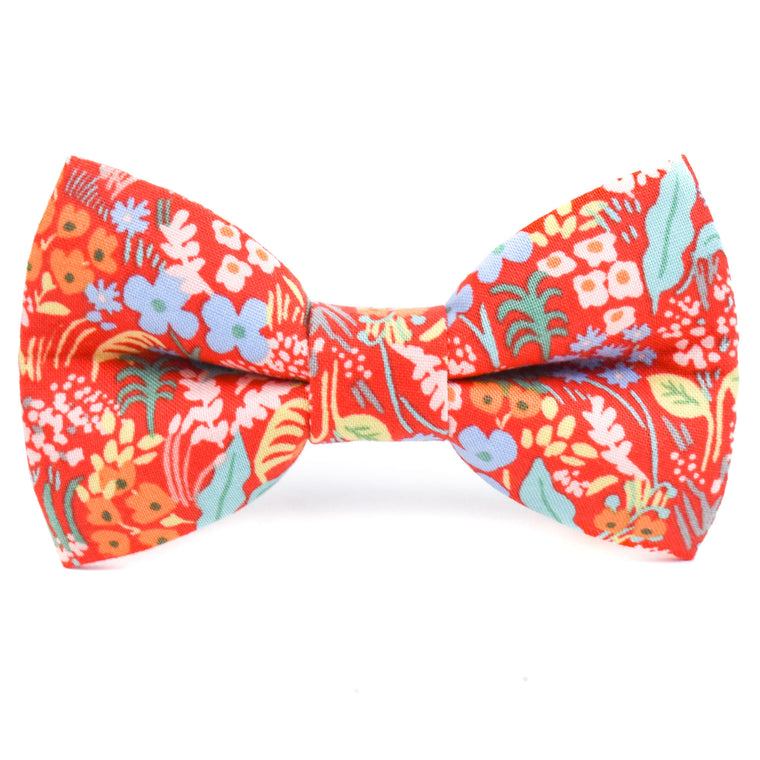 The Sienna Bow Tie