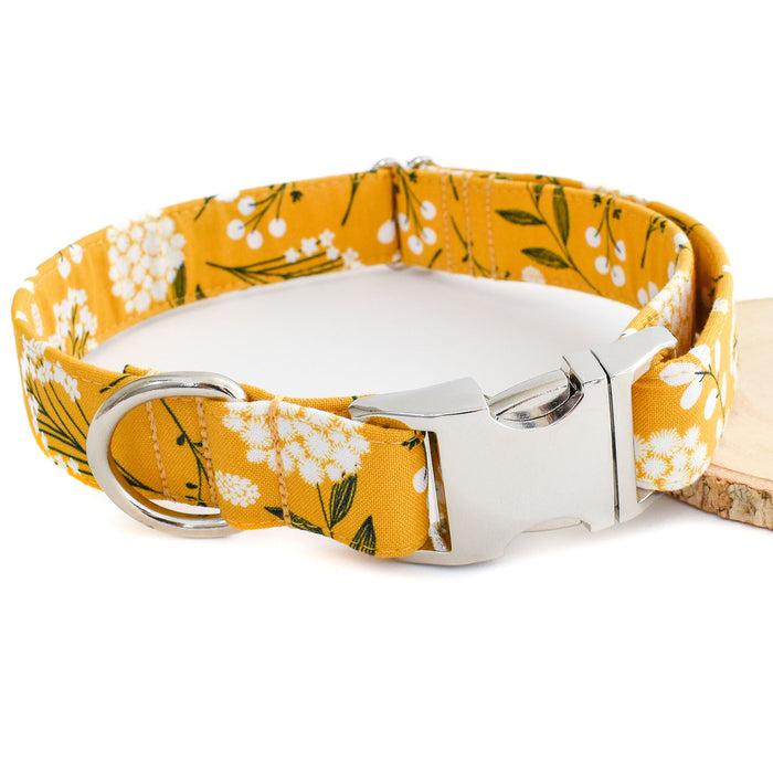 THE TUSCANY DOG COLLAR