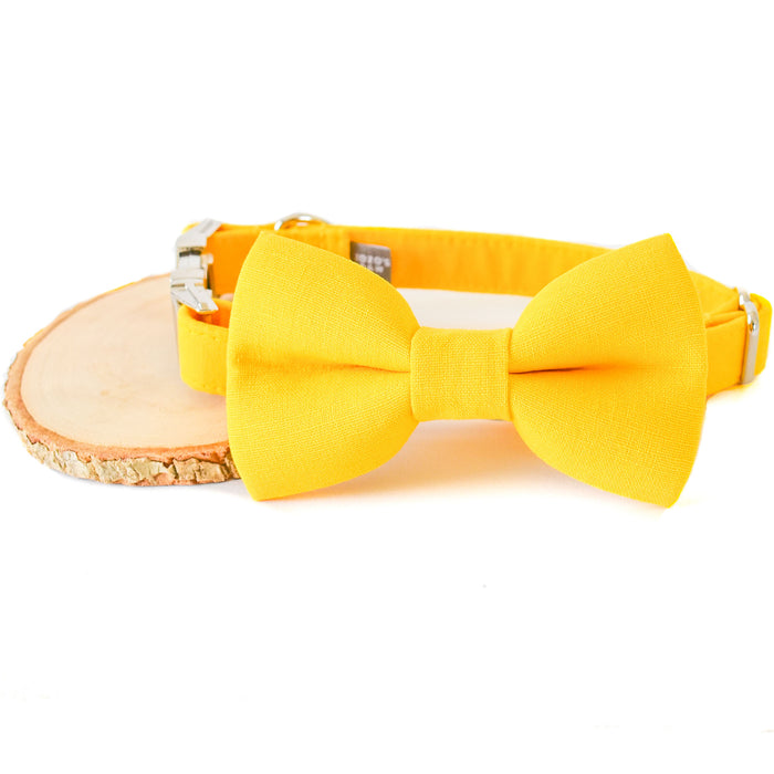 HELLO YELLOW DOG COLLAR AND BOW TIE SET