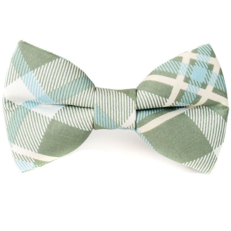 Parker Plaid Dog Bow Tie