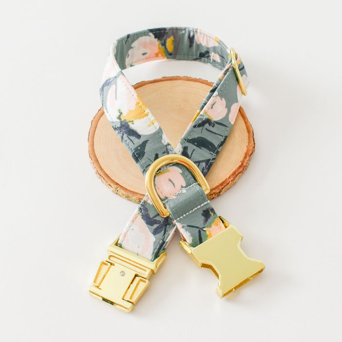 TAKE CENTER SAGE DOG COLLAR