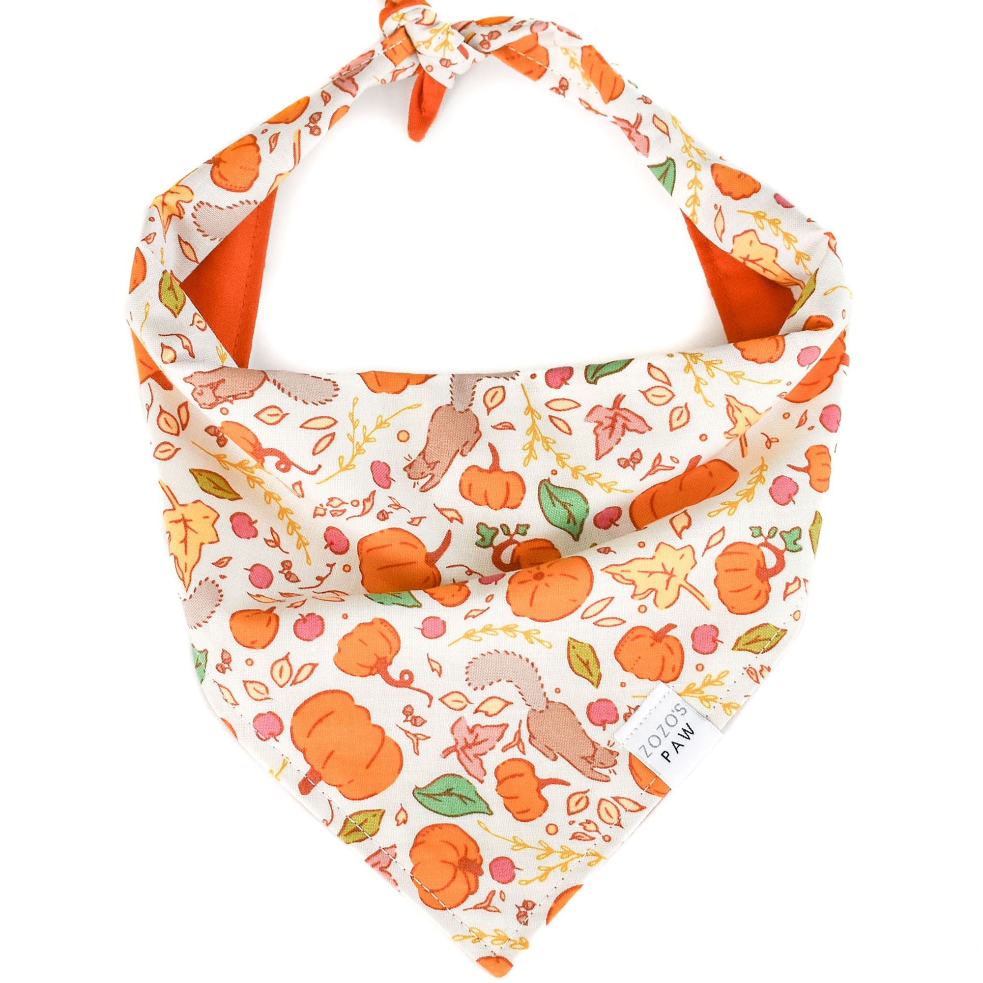 Autumn Adventures Dog Bandana