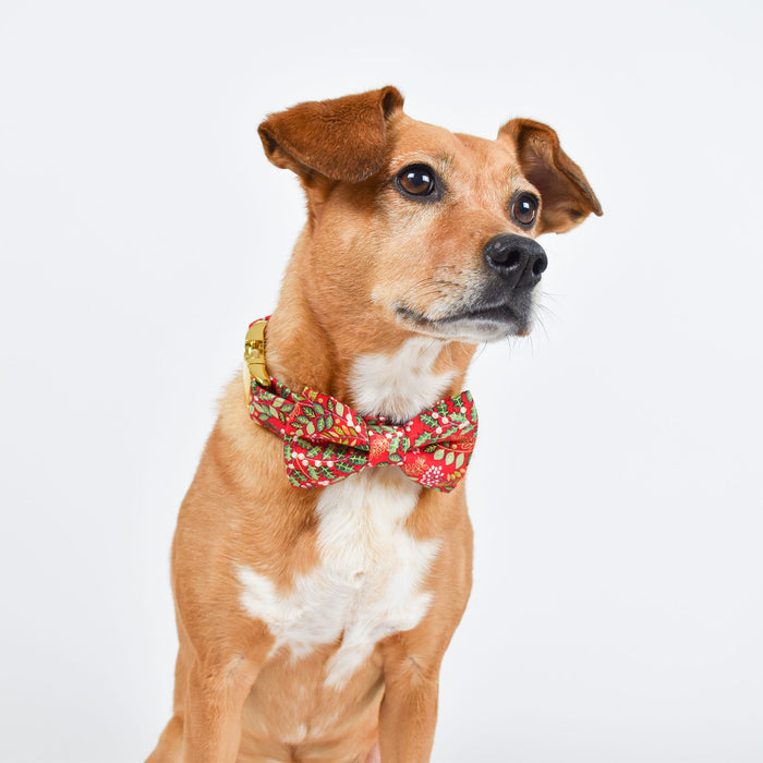 RED HOLIDAY FLORAL DOG COLLAR AND BOW TIE SET