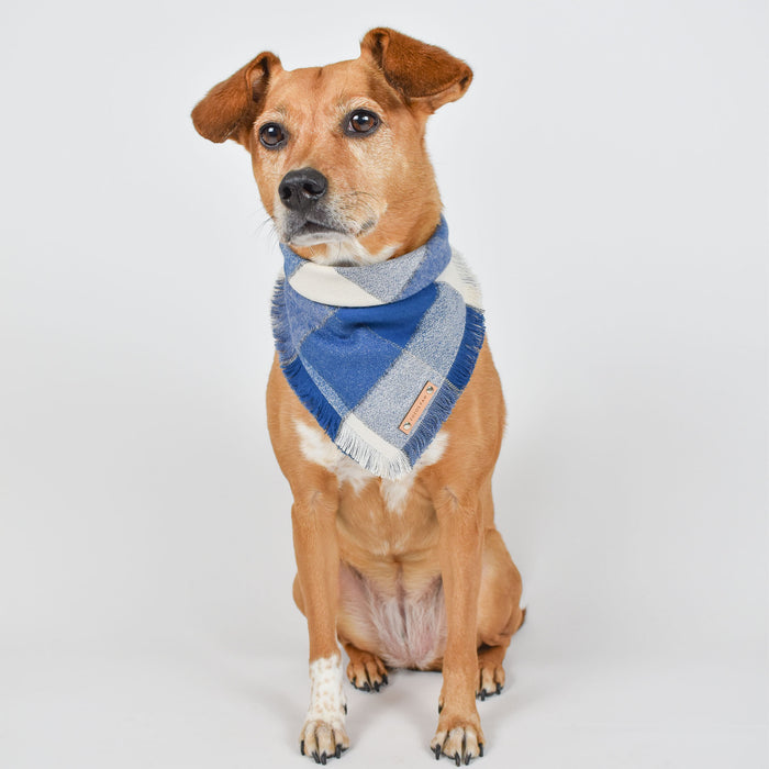 THE JUDE - Dog Flannel Fray Bandana