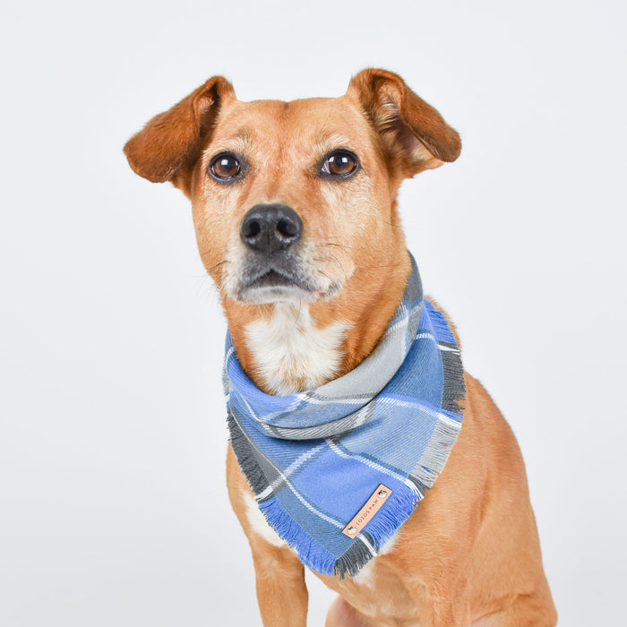 THE CYRUS - Dog Flannel Fray Bandana