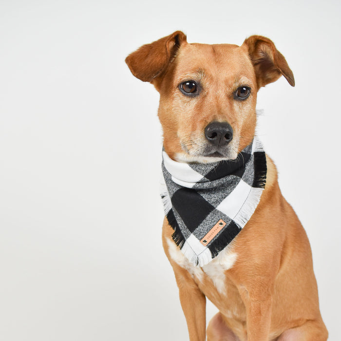 THE DEAN - Dog Flannel Fray Bandana