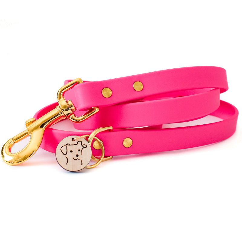Fuscia Pink Faux Leather Leash